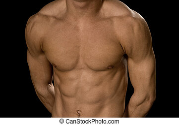 body-builder - young body-builder chest