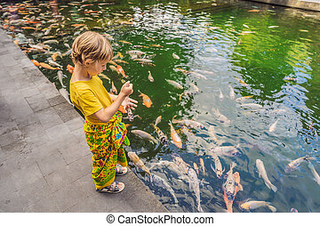 Young boy feeding koi carps in the pond