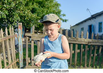 Young Boy Holding His Chick While at the Garden