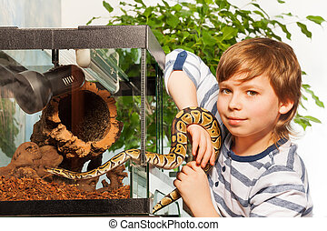 Young boy holding small Royal python - Young boy holding in...
