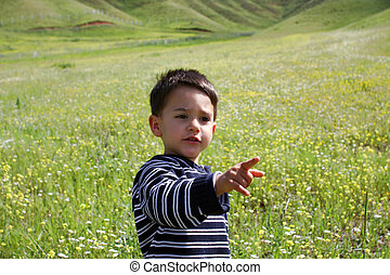 Young boy in the field