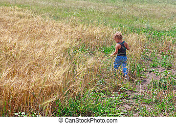 Young boy on a field of wheat