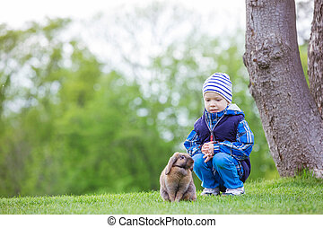 Young boy playing with pet rabbit in park