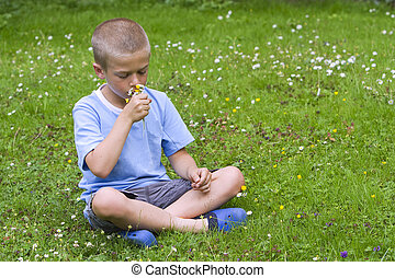 Young boy sitting in a meadow, smelling a buch of wild flowers