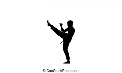 Young boy taekwondo or karate over pure white, Silhouette -...