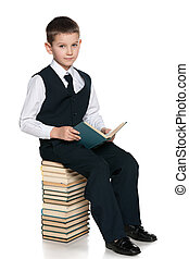 Young boy with a book is sitting on the pile of books
