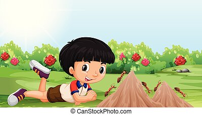 Young boy with an ant mound illustration