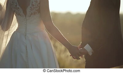 Beautiful young couple bride and groom in a wedding dress at sunset in a wheat field holding hands