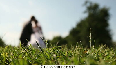 young bride and  groom stand on the green grass