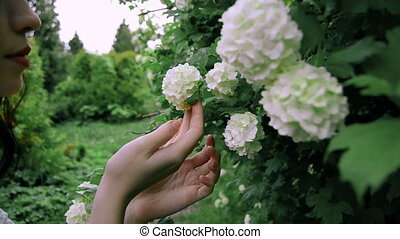 young brunette girl touching blooming white flowers