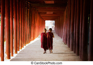 Young Buddhist monk walking and reading - Young Buddhist...