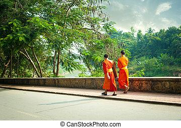 Young buddhist monks at city street. Luang Prabang, Laos