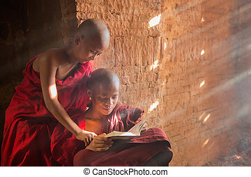 Young Buddhist novice monk reading and study outside monastery