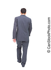 Young businessman walking away from camera on white...