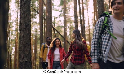 Young careless men and women are hiking in woods on sunny...