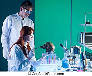 young caucasian forensic scientics - two young caucasian...