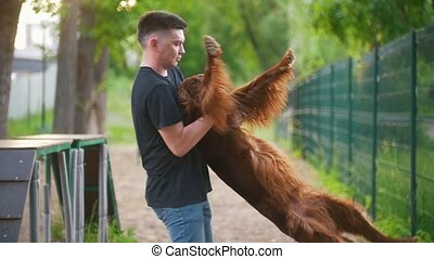 Young caucasian man whirling with his dog breed red irish...