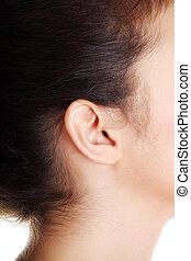 Young caucasian woman ear.