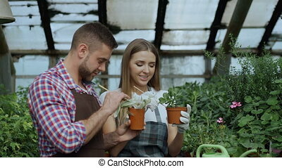Young cheerful man worker in apron chatting with woman in...
