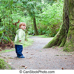 young child walking alone in forest