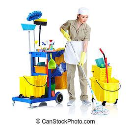 Young cleaner maid woman. - Young cleaner maid woman....