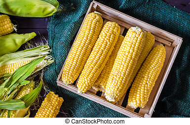 young corn in a box