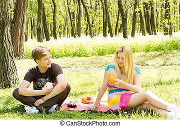 Young couple enjoying a picnic