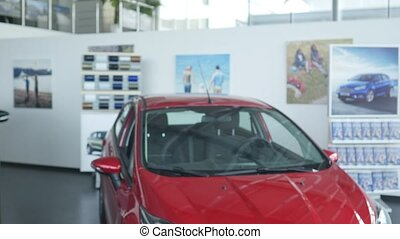 Young Couple Signing a Contract in Car Showroom