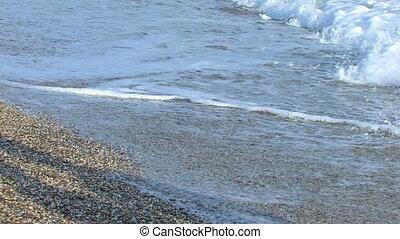 young couple walking on the seasho