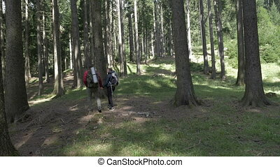 Young couple with backpacks holding hands trekking on forest...