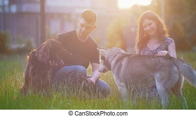 Young couple with dogs have a rest outdoors on the grass at summer sunset