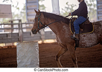 Young Cowboy Rides Horse In Barrel Racing Event At Rodeo