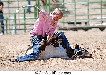 Young cowboy tying calf's legs