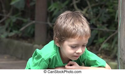 Young Curious Toddler Boy