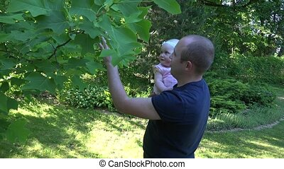 Young daddy hold curious baby daughter near tulip tree in...