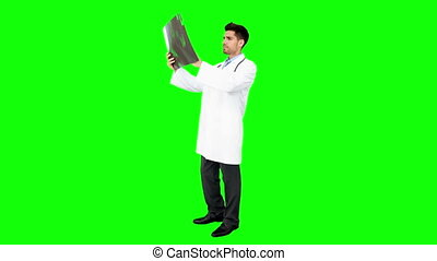 Young doctor standing with x-ray