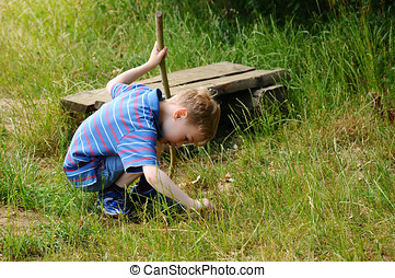 Young explorer - A young boy playing and exploring in a...