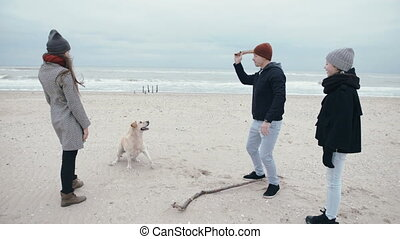 Young family is throwing a smart dog stick on the beach.
