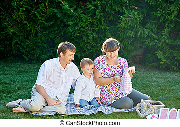 young family on a picnic in the summer park