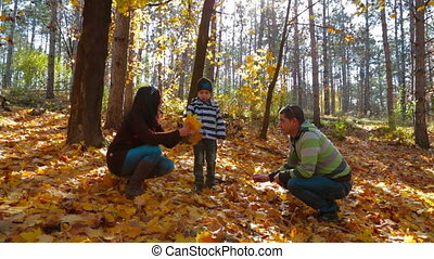 Young Family With a Little Boy Picking Up Yellow Leaves In Autumn Park