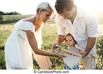 Young family with small daughter playing on a meadow in nature.