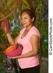 Young farmer girl collecting cacao fruits