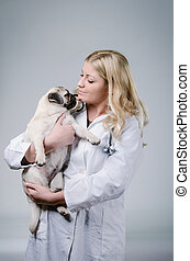 Young female blonde veterinary holding a cute beatiful pug