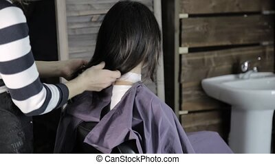 young female client in a hairdresser, completion of...
