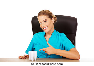 Young female dentist holding tooth model and sitting behind the desk