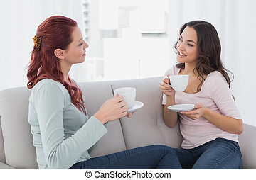 Young female friends chatting over coffee at home - Two...