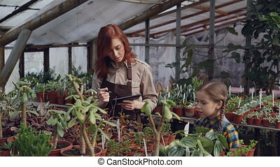 Young female gardener is counting plants in greenhouse and...