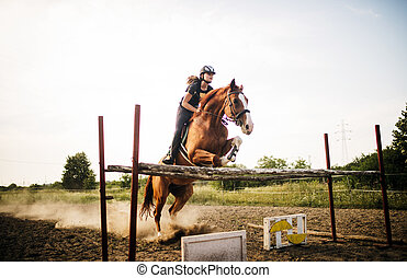 Young female jockey on horse leaping over hurdle - Young...