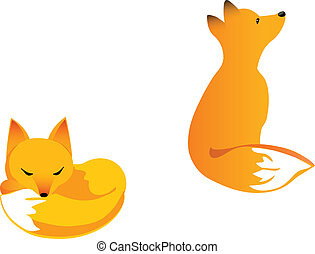 Young fox - Fox cub in two poses: curled up and siring