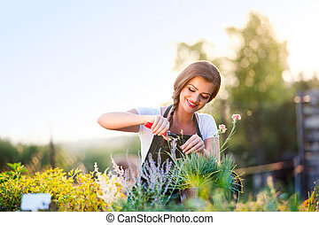 Young gardener cutting little flower plant, green sunny...